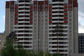 Дом в Новом Девяткино
