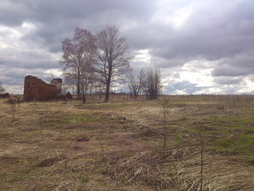 Неэффективные земли будут изымать уже весной